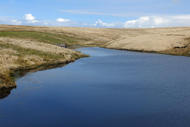 28 pinkery pond