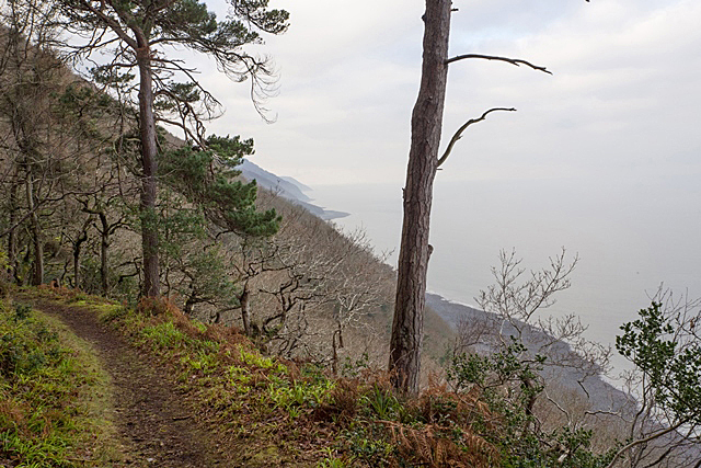 Pc290348 coast path at culbone